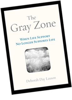 The Gray Zone by Deborah Day Laxson